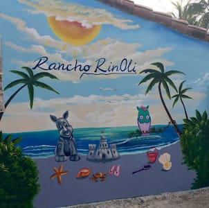 RANCHO RINOLI - Amatecampo - Ház