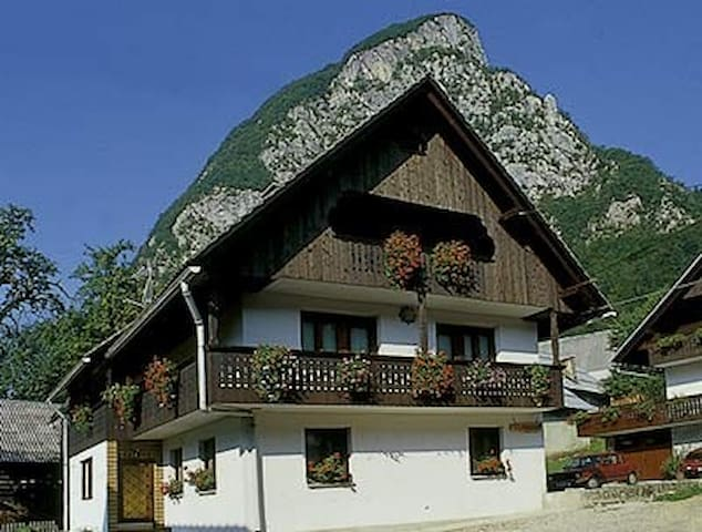 Apartment Taler / self-catering in village Studor - Srednja vas v Bohinju - Huoneisto