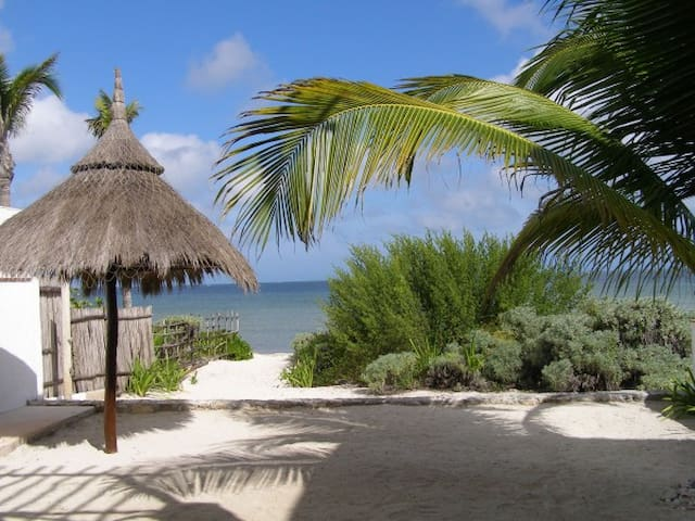 Villa de Brisas Marinas-Beachfront With WiFi