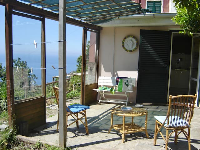 The house among olive groves - Vernazza - Rumah