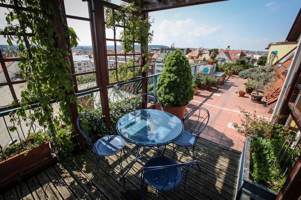 Roof Garden Apartment - terrace