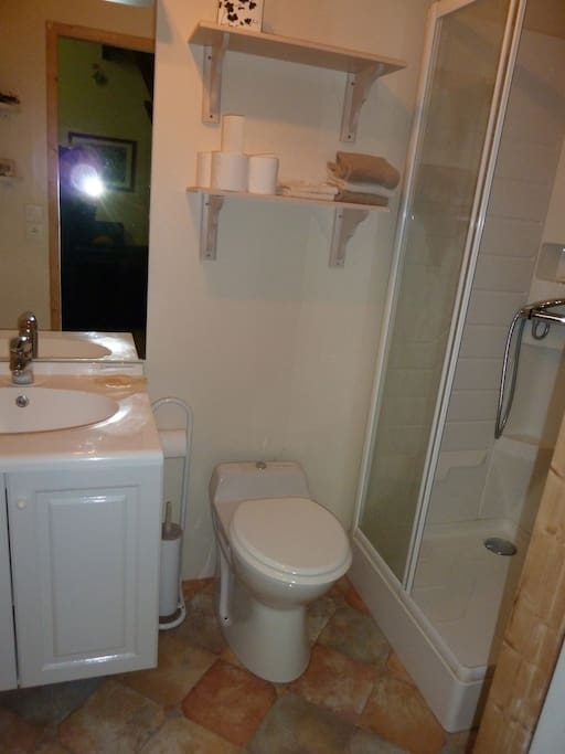 Bathroom with shower, towels are provided.