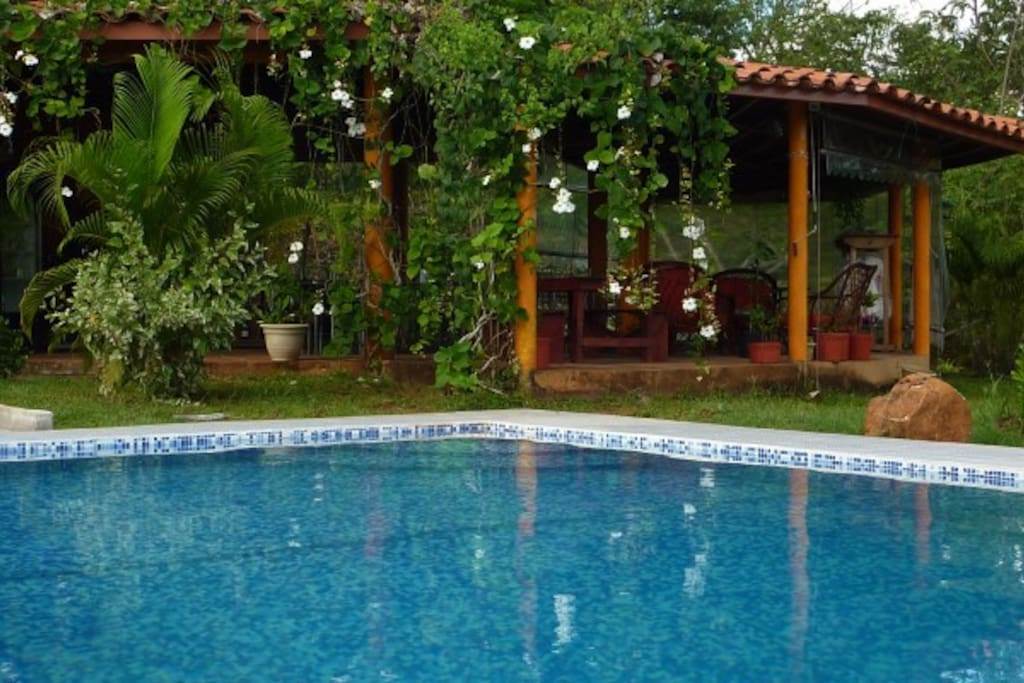 View from the swimming pool to the restaurant