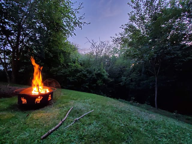 Roast hot dogs and marshmallows on a beautiful starry night.