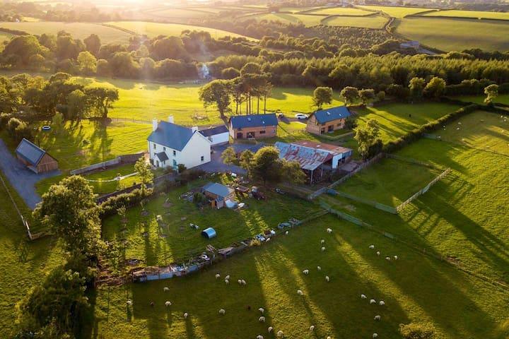 Devon Farmhouse family home on active smallholding