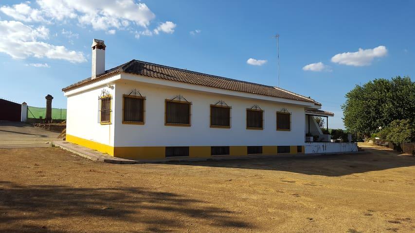 Finca de Recreo - Mairena del Alcor - Chalet