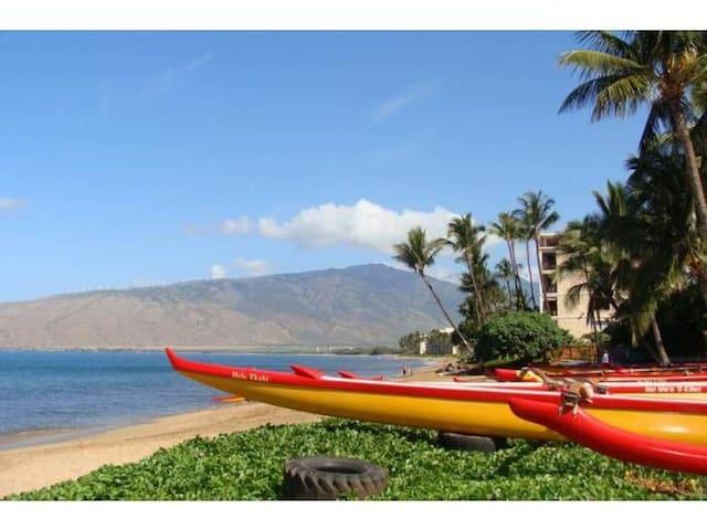 Venture to the Maui Canoe Club a short walk down the beach and take a lesson.