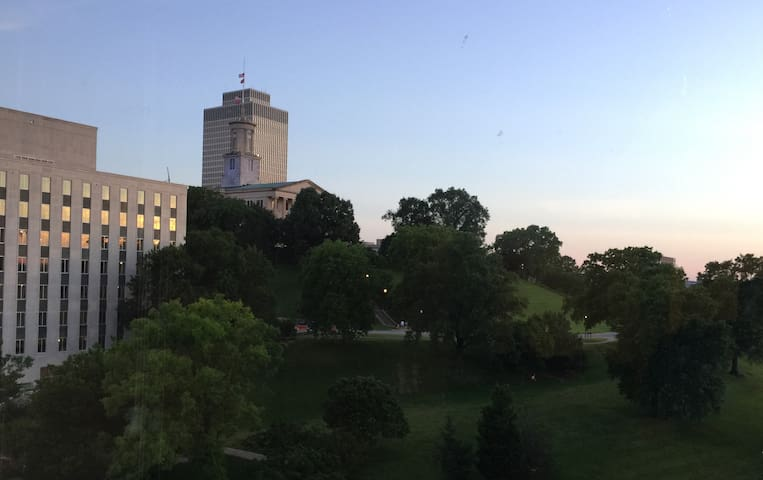 State Capitol - The view from the window