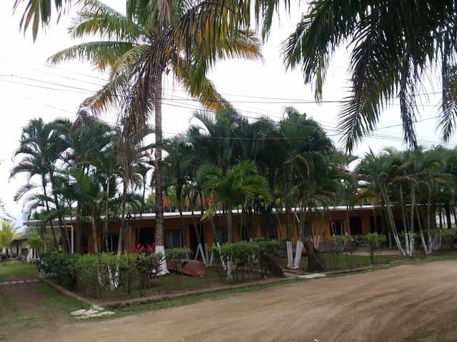 Hotel Los Micos 10