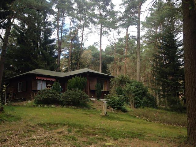 Nature´s Hideaway - Neu Wulmstorf - Casa