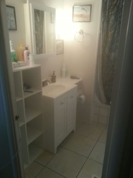 Bathroom, Toilet, Sink, Shower/Tub, Mirror