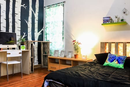 Big and Beautiful Artsy Room, Perfect Location! - San José