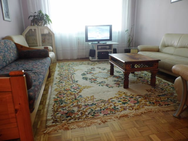 Feel like at home in 70sq meter app - Saraybosna - Daire