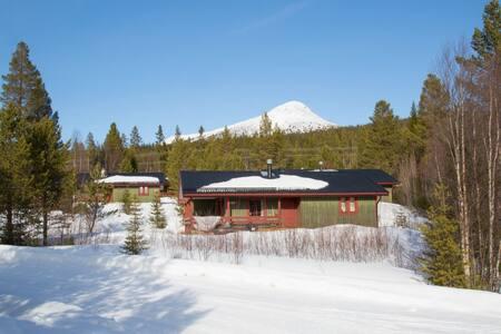 Pitoresque cottage in Swedish Lofsdalen