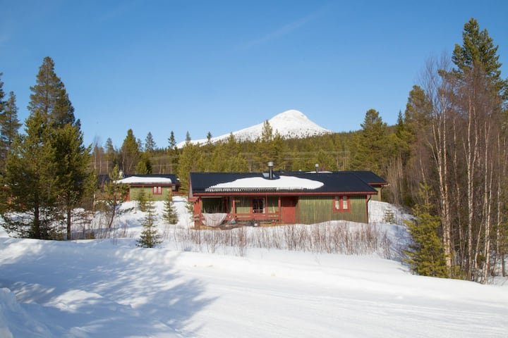 Pitoresque cottage in Swedish Lofsdalen