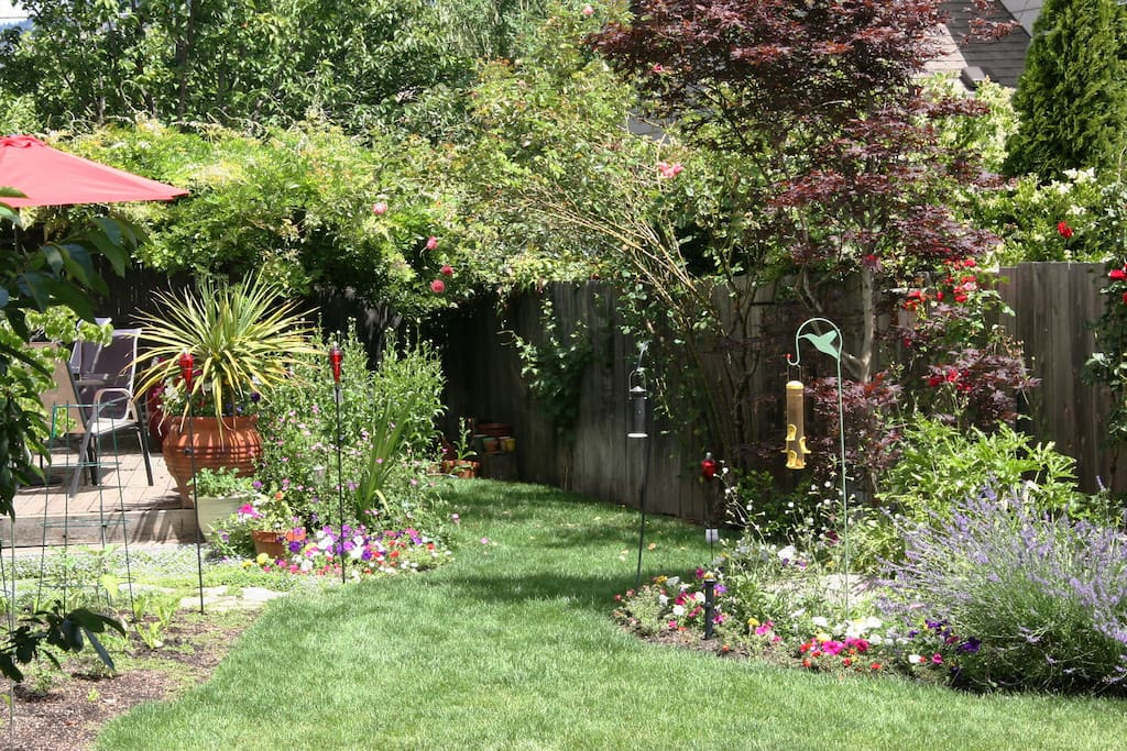 Beautiful garden with private deck. Cherry tree, plum tree, flowers, birds, butterflys