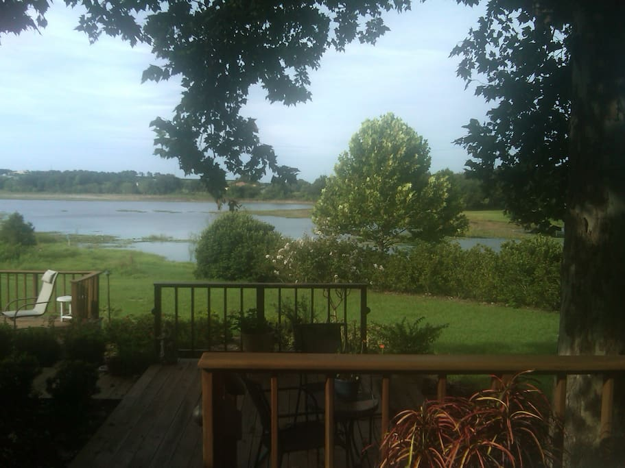 View from my deck to the back yard.