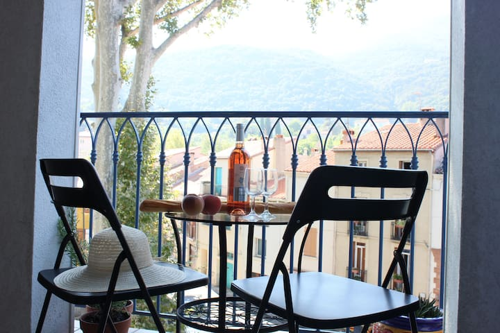 Sun-filled, old town, balcony view - Céret - Appartamento