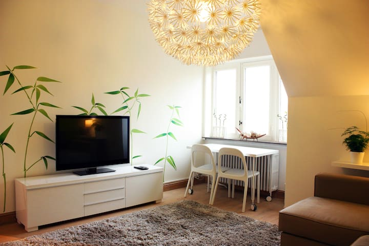 Bamboo room + 2 bicycles : +250 positive reviews - Brugge - Huis
