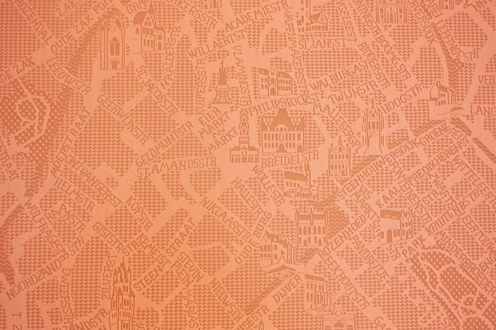 a huge map of the old city on the wall, made in lace