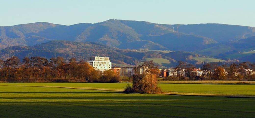 Ferienwohnung am Naturschutzgebiet - Friburgo - Appartamento
