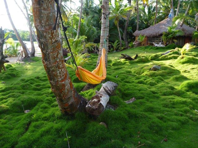 Bedroom for 2. Coco Hut. Ensueños - Autonomous Region of the Southern Atlantic - Cabin