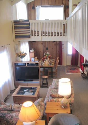 3-Bed/2-Bath Family Home in Town - Crested Butte - House