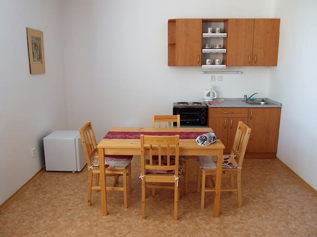 Accomodation in Vysočina Region (for 4 persons) - Věžnice