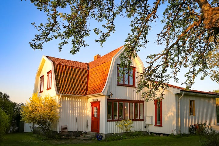 Wonderful villa at Koster island close to the sea!