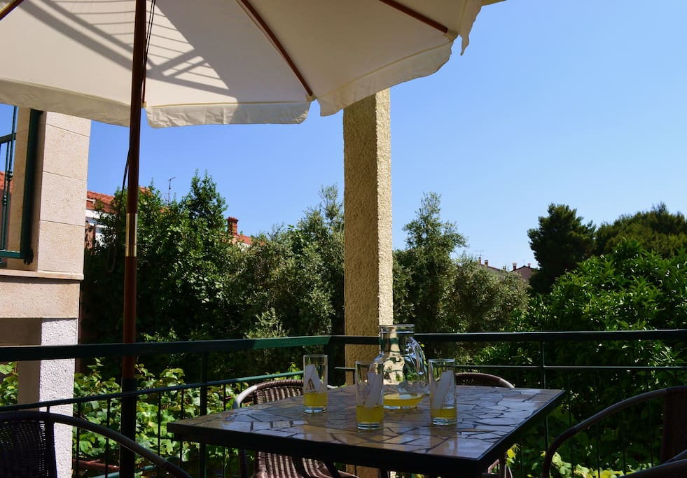 Soothing view from the terrace, ideal for relaxing with a cool beverage