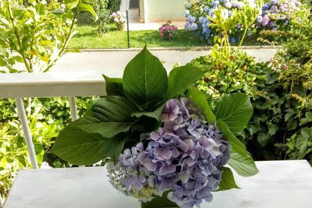 Casa adosada con jardín a 2 minutos de la playa - Tagle
