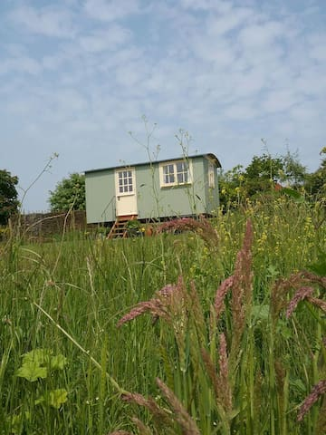 The Shepherds Hut - Musbury