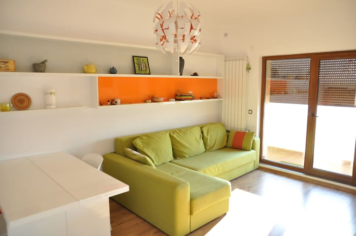 the living room, extendable couch, suitable for 2 people