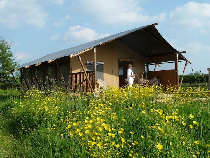 Pippin Lodge, a luxury safari tent in Glastonbury
