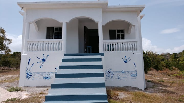 Dragonfly Villa - 2BR -Three blocks to beach