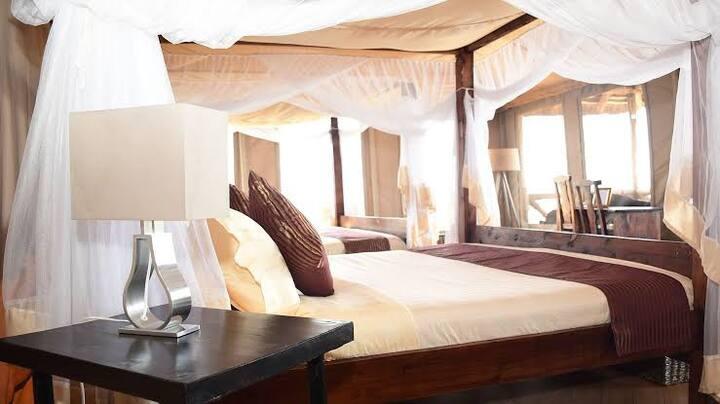 Paradise-Like Hotel