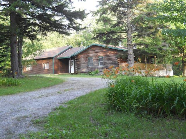 The Amidon House