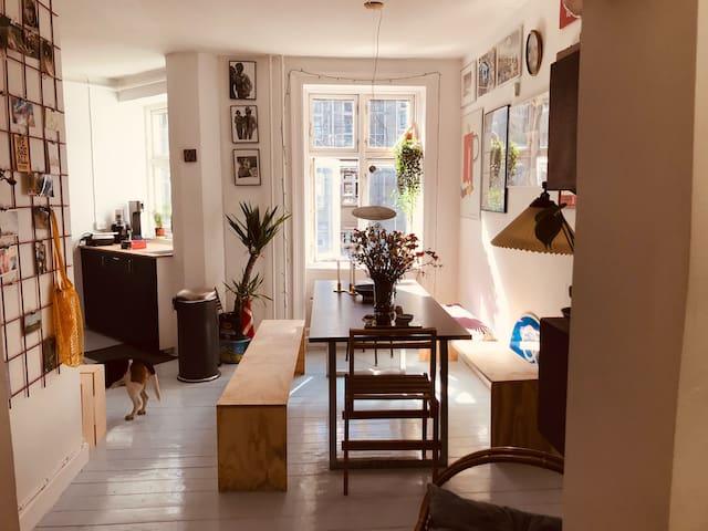 Clean flat in vibrant Vesterbro