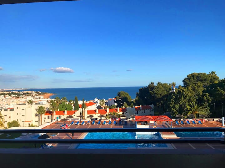 Hortensia apartment sea view swimming pool