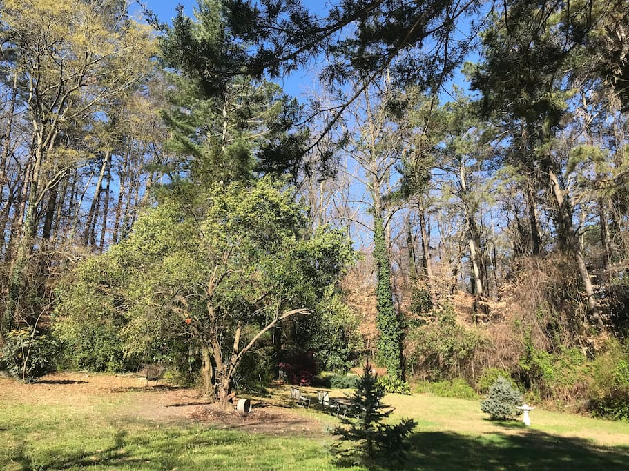 2 acres of private yard space