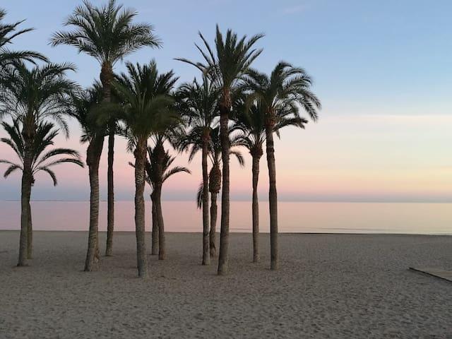 Villa Ovalada finner du 140 meter fra strandkanten til Middelhavet