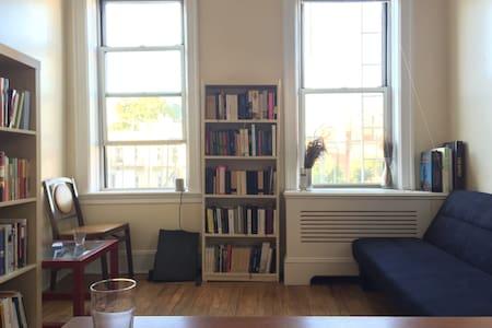 Bright Astoria apartment with lots of books - Queens - Apartment