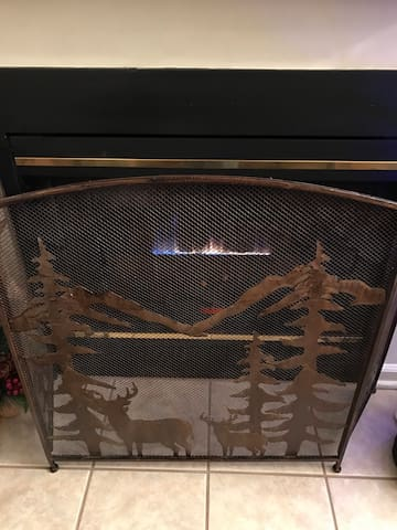 Gas Fireplace to cozy up to on those cold Winter nights