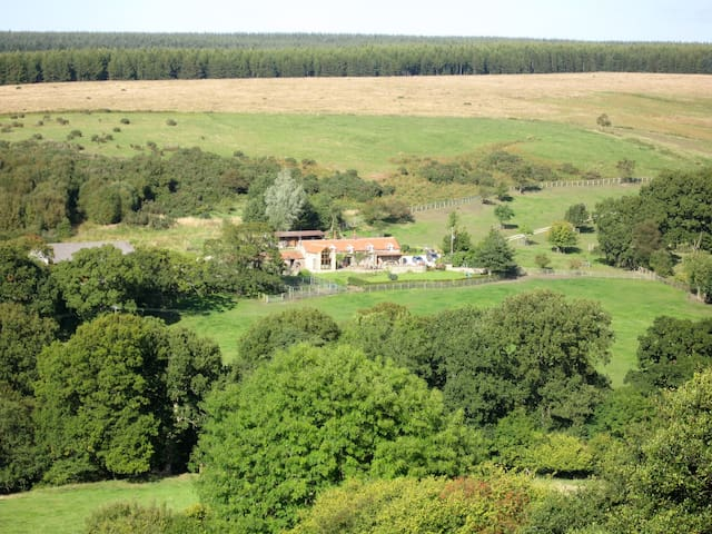 Scenic Farm B&B in Dalby Forest