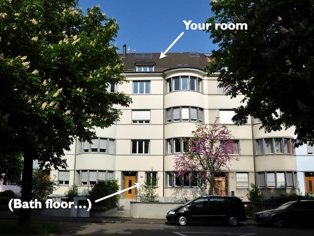 Two rooms under the rooftop - Basel - Hus