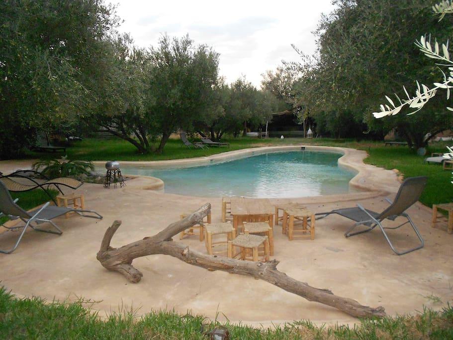 Riad piscine chauff e ourika 13 chb 40 pers villas for Riad marrakech piscine chauffee