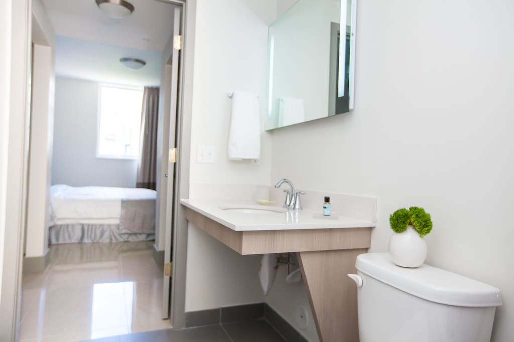 New and Modern 1 Bedroom Apartment Apartments for Rent