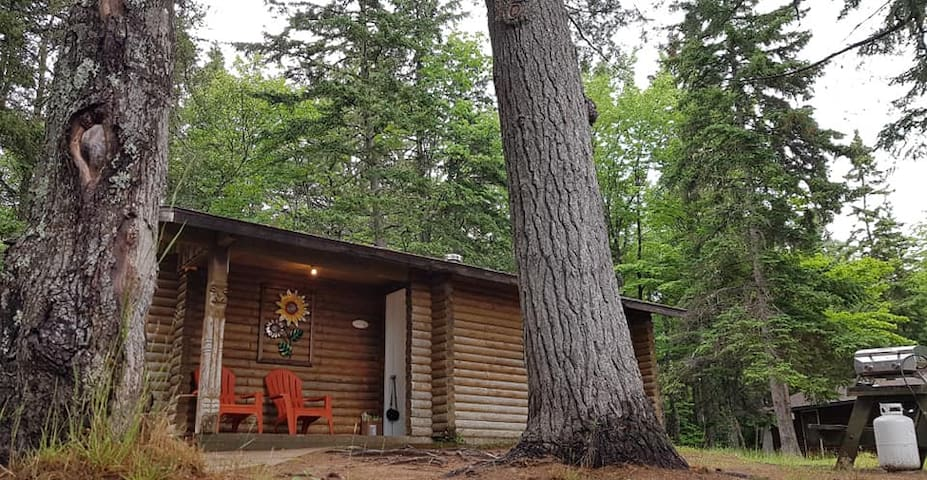 Indian Island Riverside Log Cabins