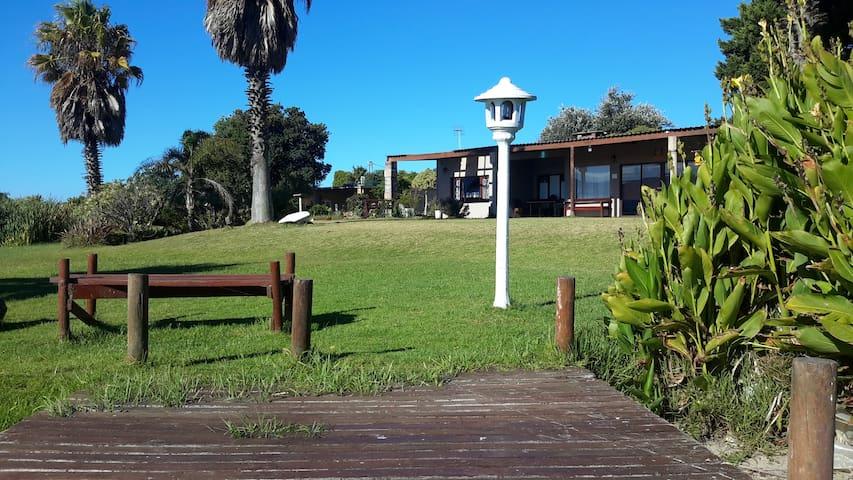 Cape Town's unique Nature Lodge, Guesthouse, Beds - Kapstaden - Naturstuga