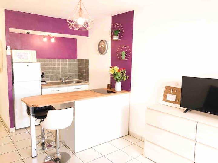 Studio lilas meublé avec jacuzzi 200m de la plage